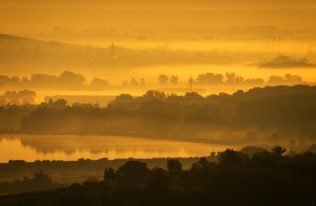 Klidná krajina v ranní mlze