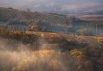 uličkami vinohradů