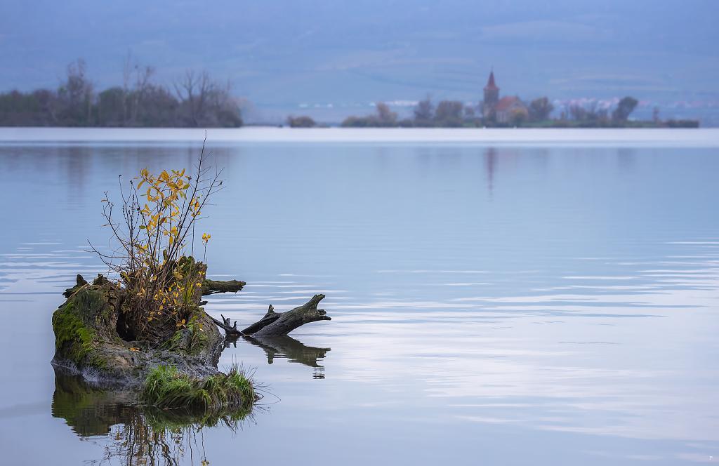 Chladné ráno u jezera