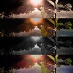 Natur. od Lusybyluc