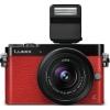 Malý Panasonic Lumix GM5 dostal EVF