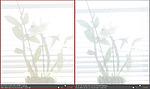 Dynamický rozsah - porovnání Camera Raw (2)