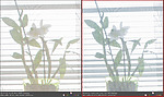 Dynamický rozsah - porovnání Camera Raw (4)