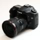 Canon EOS 40D: neúnavný dříč
