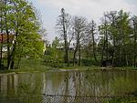 Standardní scéna - rybník