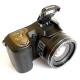 Nikon Coolpix L100: lovec hmyzu